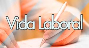 Solicitar vida laboral: Consideraciones y procedimientos para tu informe